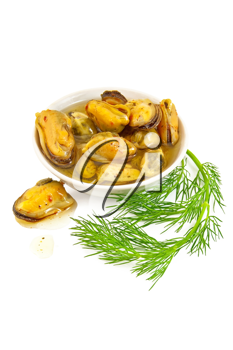 Mussels with spices and butter in a dish, a sprig of dill is isolated on a white background