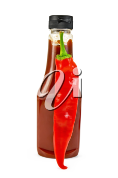 Tomato ketchup in a plastic bottle, pod hot pepper isolated on white background