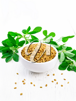 Fenugreek seeds in a bowl and on a table with green leaves on white wooden board background