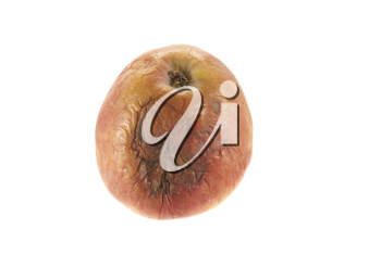 Royalty Free Photo of a Rotten Apple