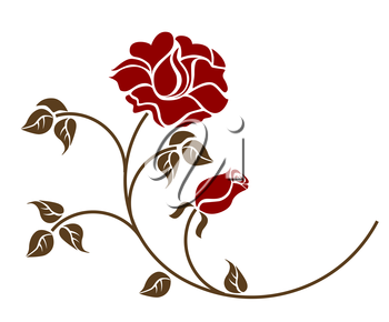red roses on the white backgroud. Please check my portfolio for more versions