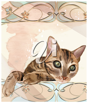Portrait of  the cat in watercolor style. Cat has been drawn with brushes from Adobe Illustrator without auto tracing. Cat can be used for t-shirt design
