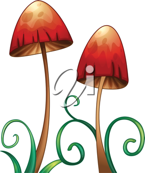 illustration of red mushrooms on a white background