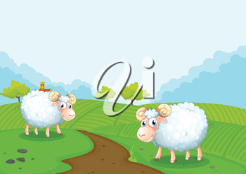 Illustration of the two sheeps in the farm