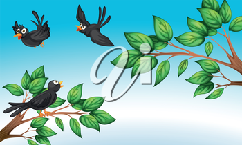 Illustration of the three birds at the forest