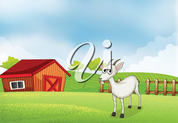 Illustration of a white goat at the farm
