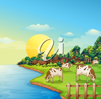Illustration of the cows at the farm