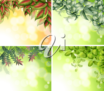 Background design with nature theme illustration