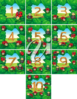 Number one to ten with ladybugs background illustration
