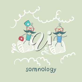 somnology flies in the cushions of the patient