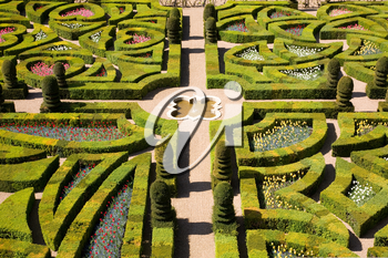 Gardens of the Chateau de Villandry, France