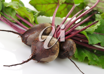 fresh beet roots with leaves on white background,