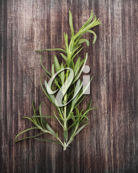 Branch Of Rosemary Isolated On A Cutting Board