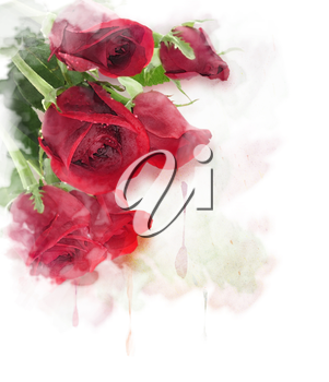Red Roses Watercolor Digital Painting