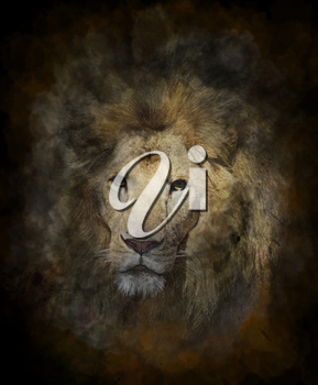 Watercolor Digital Painting Of Lion