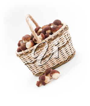 Royalty Free Photo of a Basket of Mushrooms