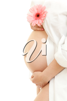 Royalty Free Photo of a Pregnant Woman Holding a Daisy