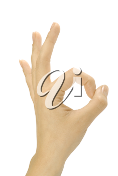 OK hand sign isolate on white
