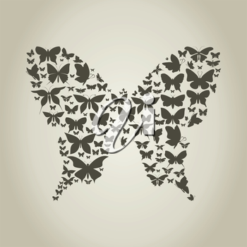 The butterfly made of butterflies. A vector illustration