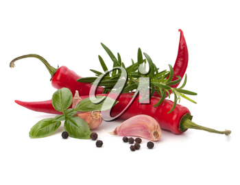 Chili pepper and flavoring herbs isolated on white background