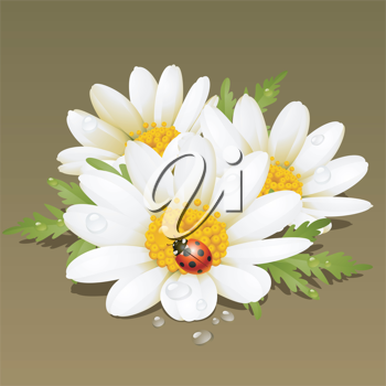 Royalty Free Clipart Image of Flowers and a Ladybug