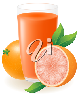 Royalty Free Clipart Image of Grapefruits and Juice