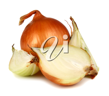 healthy vegetable onion isolated on white background
