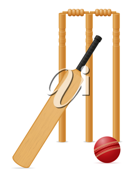 cricket equipment bat ball and wicket vector illustration isolated on white background