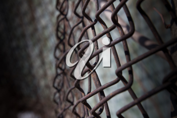 a rusty iron fence mesh