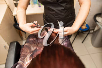 Female haircut with scissors in the beauty salon .