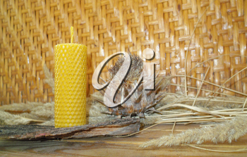 hand rolled natural beeswax candles taper