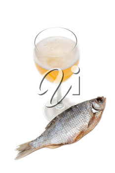 Royalty Free Photo of a Glass of Beer and Fish