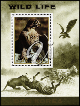 NORTH KOREA - CIRCA 1984: A Stamp sheet printed in NORTH KOREA shows image of a Eagle and Lion preying on Zebra from the series Wild Animals, circa 1984