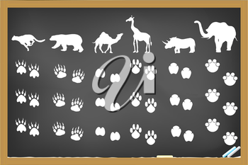 Royalty Free Clipart Image of Animal Footprints on a Chalkboard