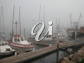 Royalty Free Photo of Ships in a Foggy Harbour