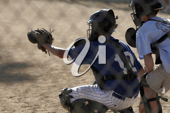 Royalty Free Photo of a Catcher and Umpire
