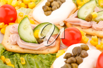 Fish cream on crackers, sweet corn, cherry tomato and lettuce closeup picture.
