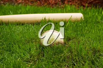 Closeup horizontal photo of old baseball in front of wooden bat on natural grass field