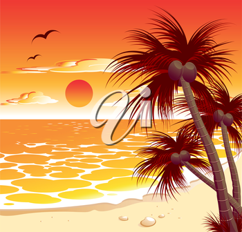 Beautiful tropical seascape with a sunset and palms