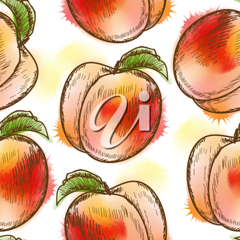 Seamless pattern with peach. Painted in watercolor style
