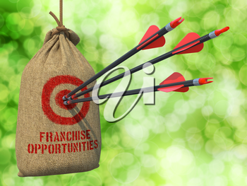 Franchise Opportunities - Three Arrows Hit in Red Target on a Hanging Sack on Natural Bokeh Background.