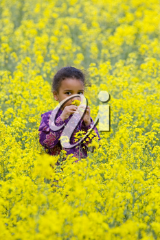 A beautiful young mixed race girl smelling one of the flowers in a field of blooming yellow rapeseed plants