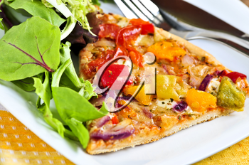 Vegetarian meal of vegetable pizza and green salad