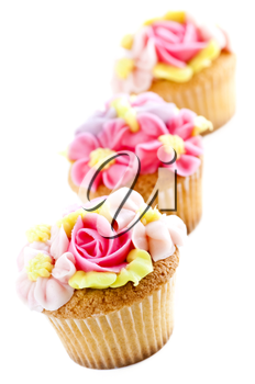 Row of tasty cupcakes with icing flowers