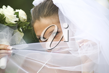 Close-up of young green-eyed bride holding veil by her face and looking at camera
