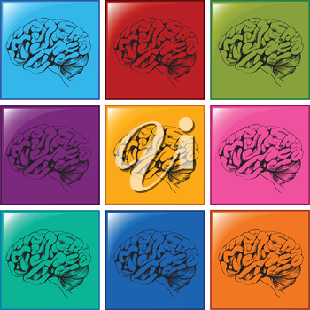 Illustration of the brain icons on a white background