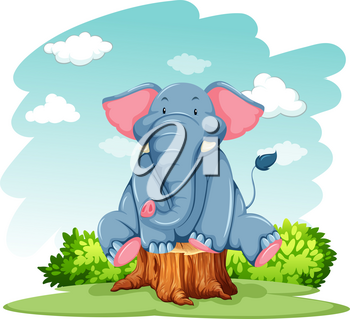 Blue elephant above the trunk on a white background