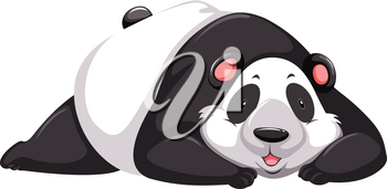 One tired panda bear on a white background