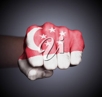 Front view of punching fist on gray background, flag of Singapore