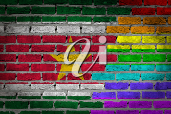 Dark brick wall texture - coutry flag and rainbow flag painted on wall - Suriname